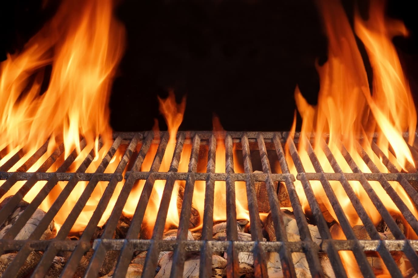 The Different Types of Grills And Smokers For BBQ